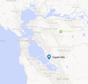 Coyote Hills Location