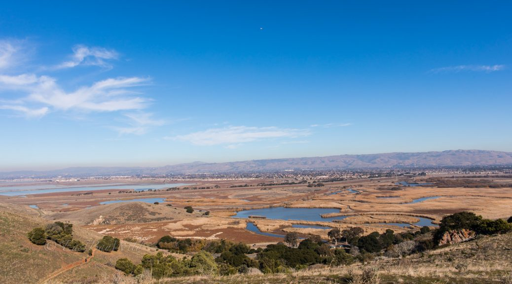 Marshes of the Coyote Hills