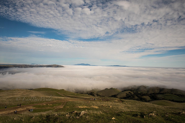 Fog on Mission Peak trail