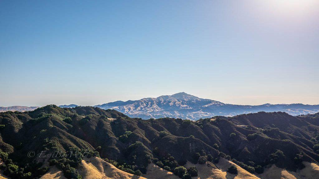 Mt Diablo from the Rocky Ridge View Trail