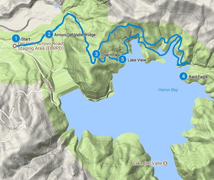 Del Valle Heron Bay Trail