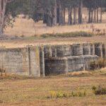 Bunker ruins in the Whittell Marsh