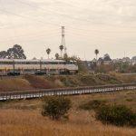 Amtrak roars by the Giant Marsh